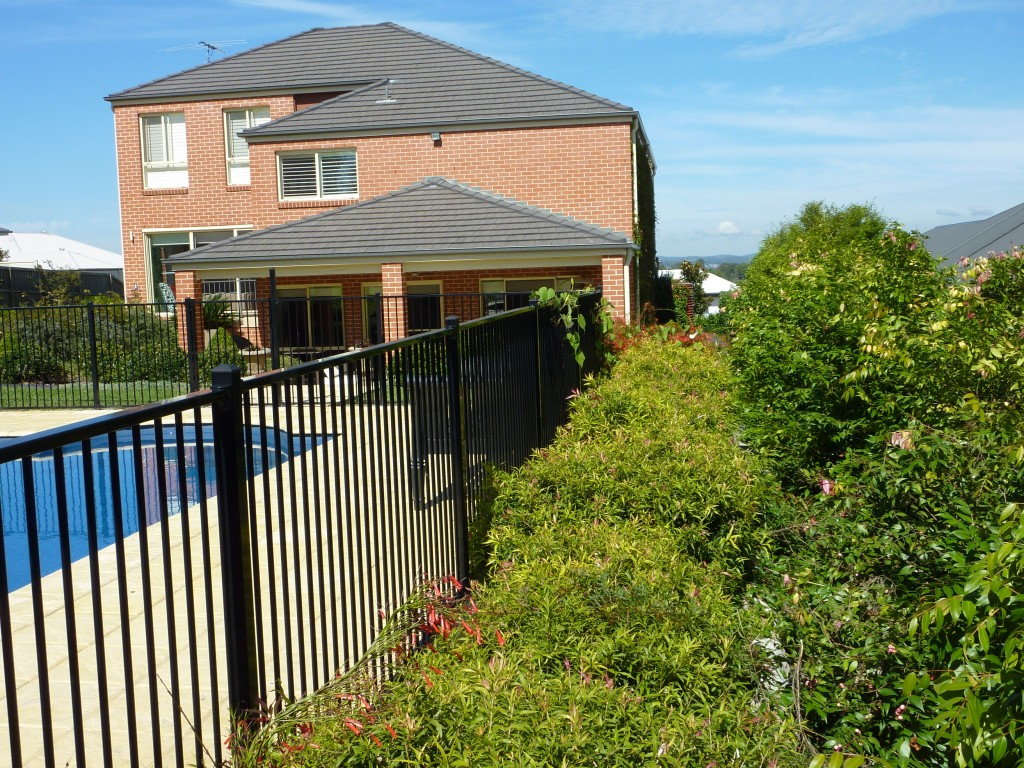 Residential garden for privacy horticulture pacific for Garden design newcastle